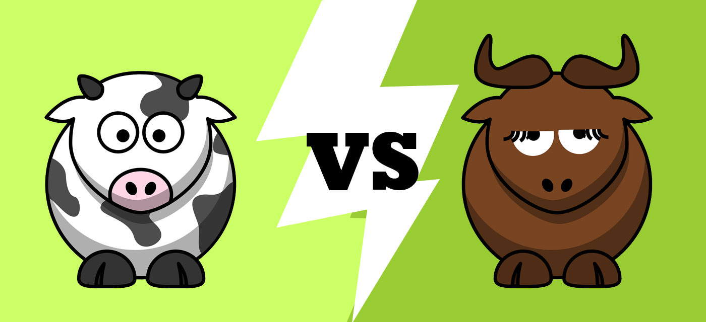 Cow Milk or Buffalo Milk? Which is best?